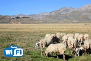 wi-fi Castelluccio di Norcia